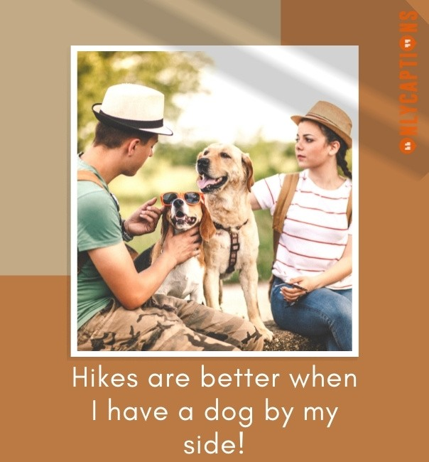 Captions For Hiking With Dog 2021
